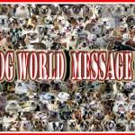Bulldogworldmessageboard floyd rechts boven