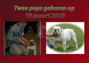 2 pups geb op 18 mrt 2010