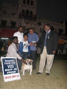 Best in Show India Glimmer Friends Hot To Handle