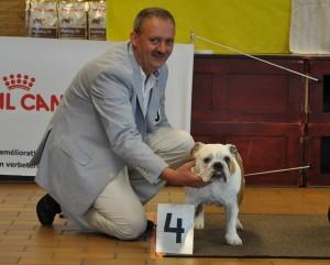 Jazzlyn 4de plaats pupklas Belgische Engelse Bulldogclub show 2012