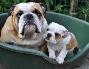 Jazzlyn en haar grote oom Floyd