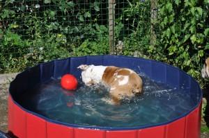 Jazzlyn is helemaal weg van spelen met water